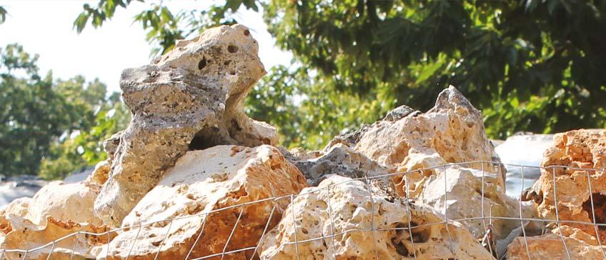 Terricci mechelli terricci e substrati professionali per - Rocce per giardino ...